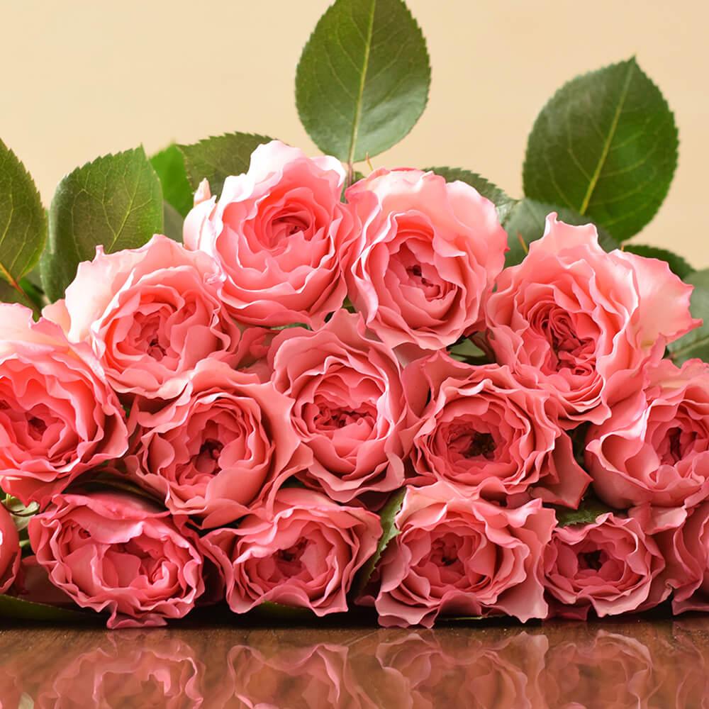 Mayras Rose Pink