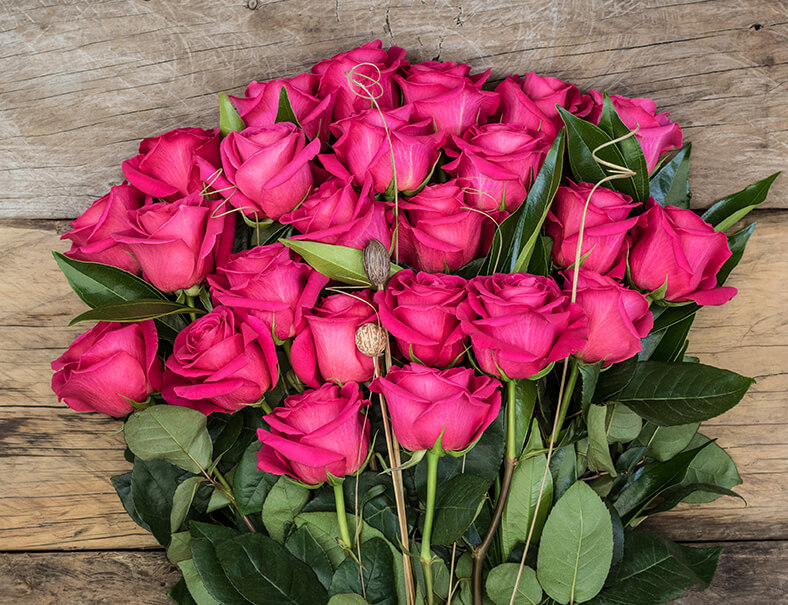 Rosas de Hoja Verde